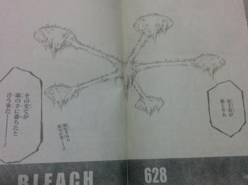 bleach6285 (1)