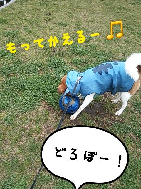 2015-04-20-13-51-10_deco.jpg