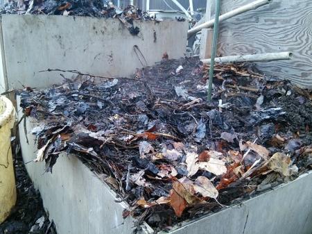 落ち葉堆肥から水蒸気