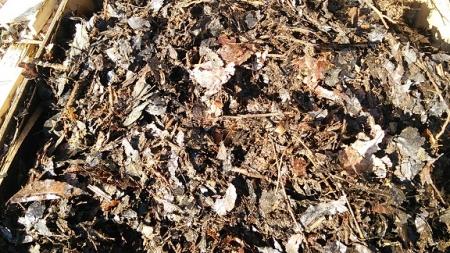 堆肥化の様子