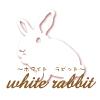 ホワイト☆ラビット