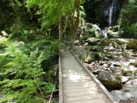 払沢の滝にてウィル