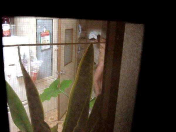部屋 盗撮 画像 6