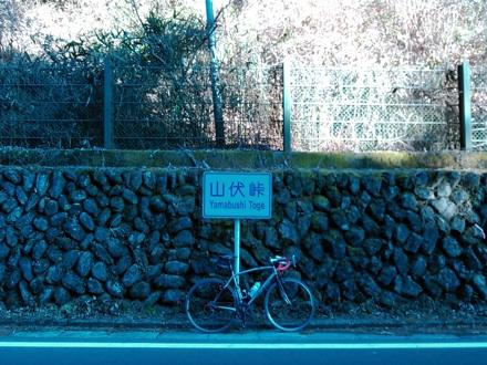 20141223_yamabusi.jpg