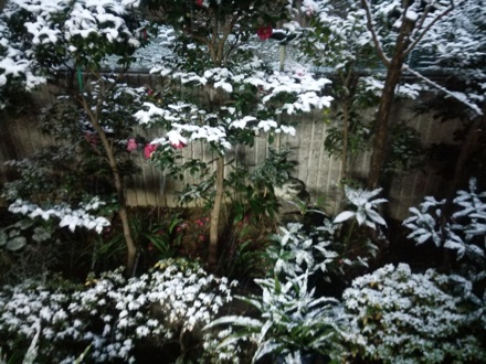 20150101_snow.jpg