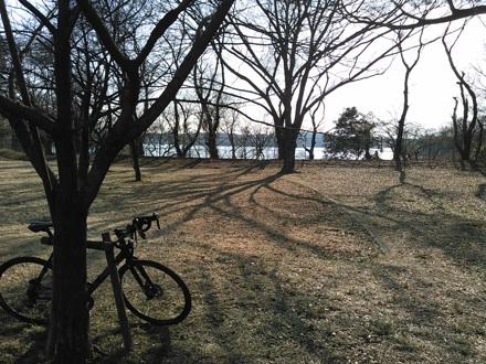 20150211_sayamako2.jpg