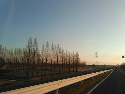 20150215_yosimi1.jpg