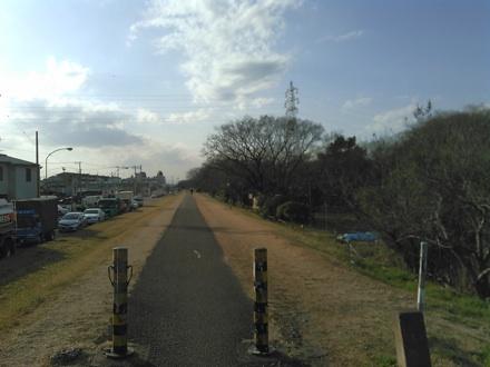 20150227_tamasai.jpg
