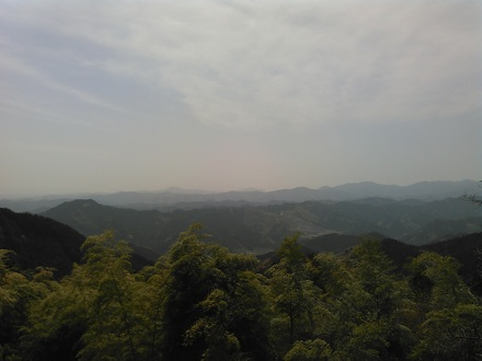20150418_kaburi.jpg