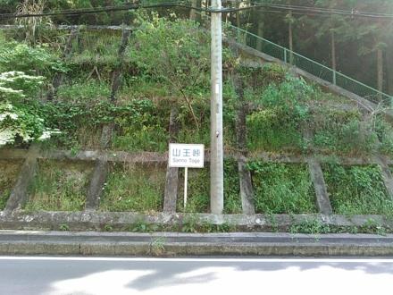 20150510_sannou.jpg