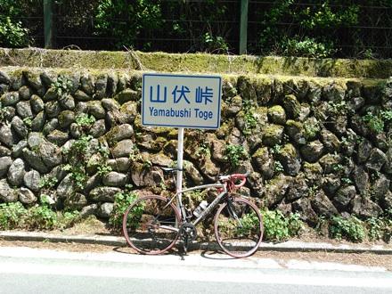 20150510_yamabusi.jpg