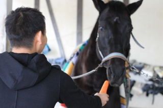 乗馬体験_010