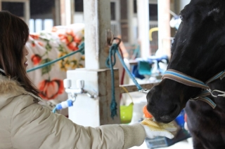 乗馬体験_011