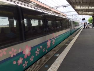 伊豆高原の桜_002