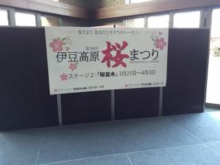 伊豆高原の桜_007