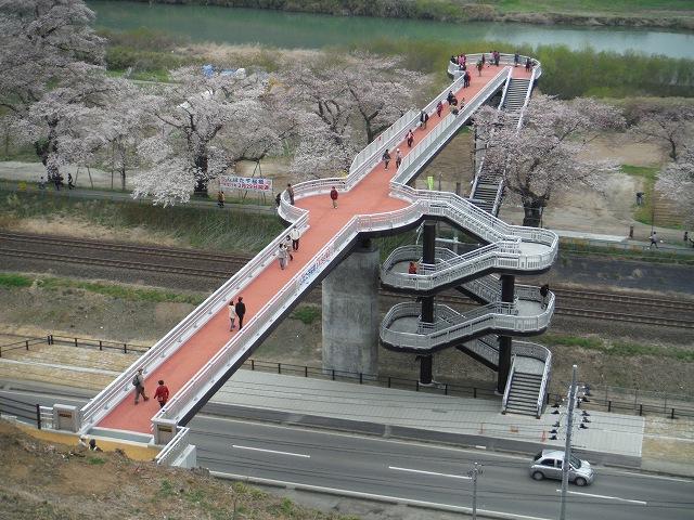 04ひと目千本桜DSCF5275-200
