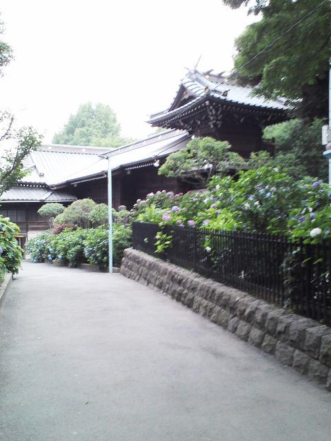 1506_W01_Hakusan01.jpg