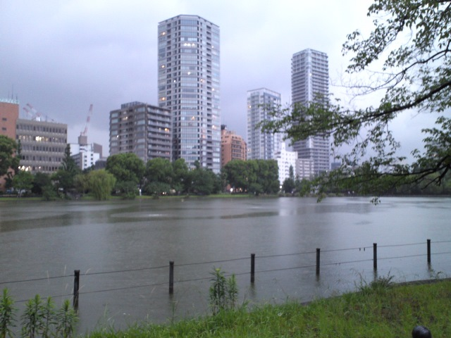 1506_W01_shino_rainy.jpg