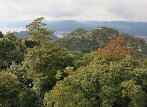 弥山から駒林