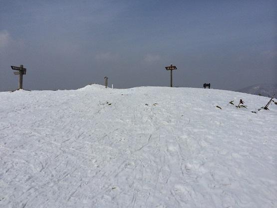 しんにゅう山山頂