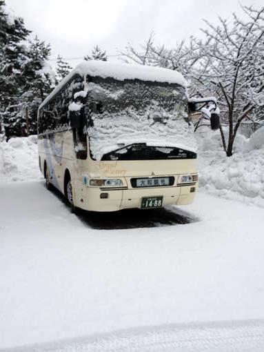 bus2-270102.jpg