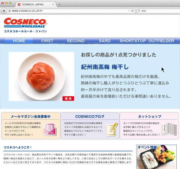cosneco_hp17