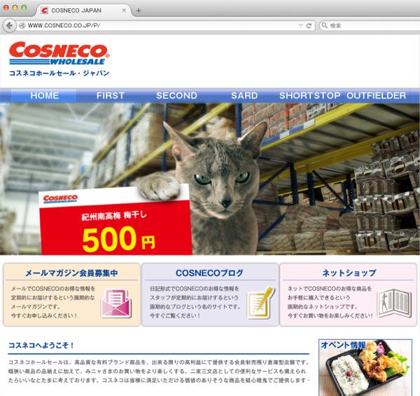 cosneco_hp19