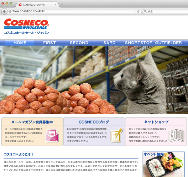 cosneco_hp21