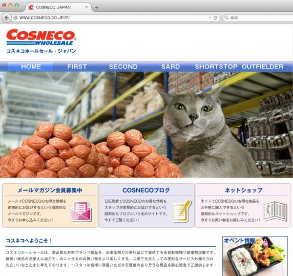 cosneco_hp22