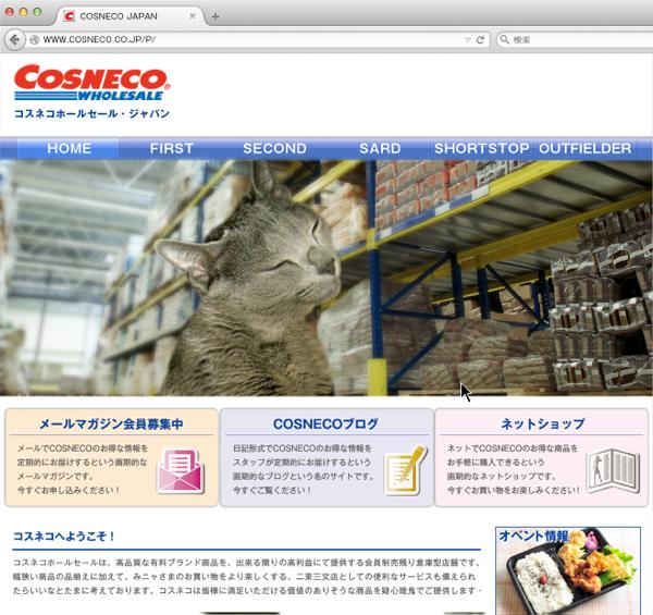 cosneco_hp29