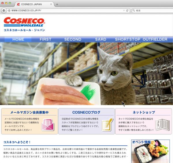 cosneco_hp33