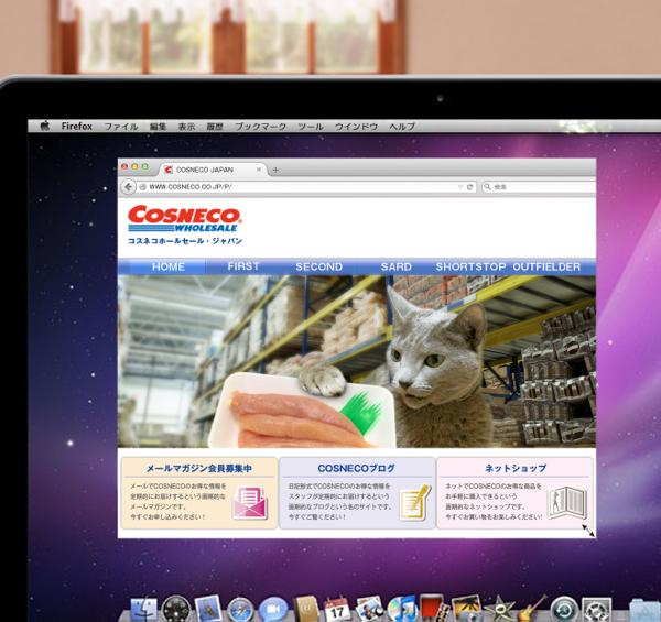 cosneco_hp34