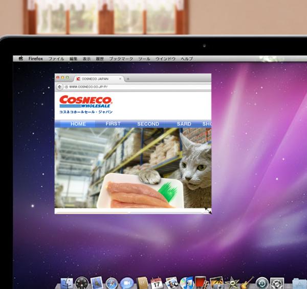 cosneco_hp35