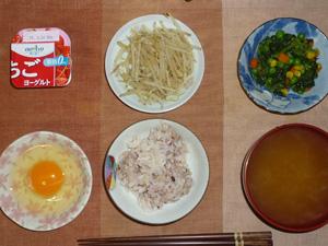 胚芽押麦入り五穀米,卵,ほうれん草とミックスベジタブルのソテー,もやしの炒め物,ワカメのお味噌汁,ヨーグルト