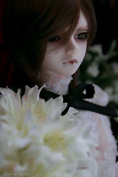 doll20150217001.jpg