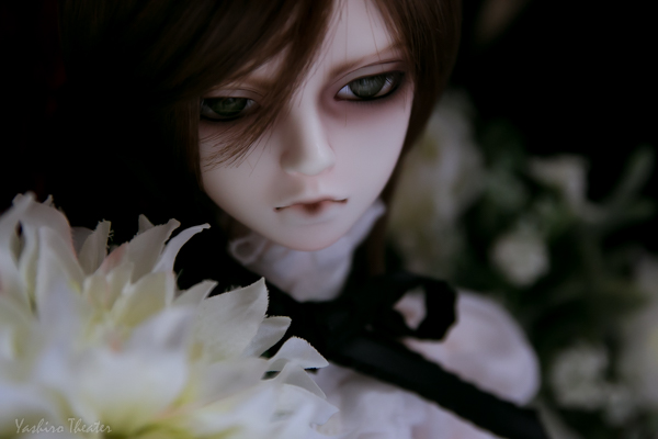 doll20150217007.jpg