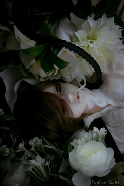 doll20150217009.jpg