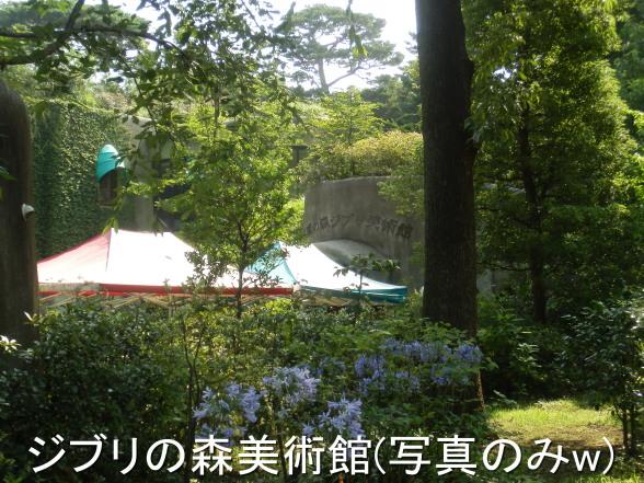 20150711 ジブリの森