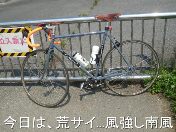 20150712 荒サイ 南風