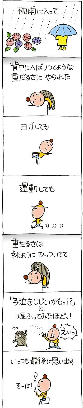 バイオイーザー15-01