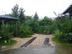 IMGP0067-1.jpg