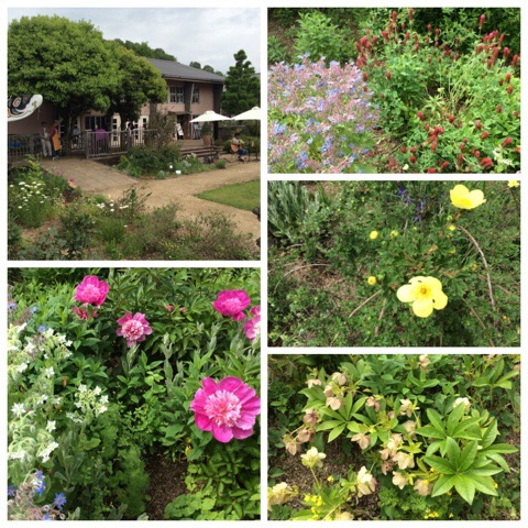 英国庭園2