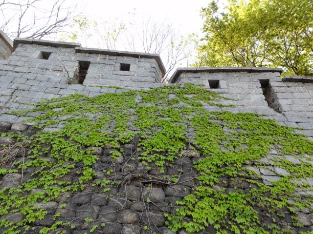 2015年4月21日 新緑のソウル城郭