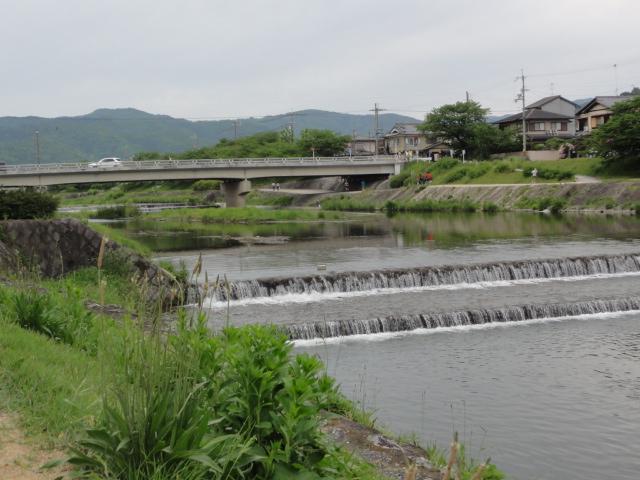 2015年5月6日 鴨川(賀茂川)散策