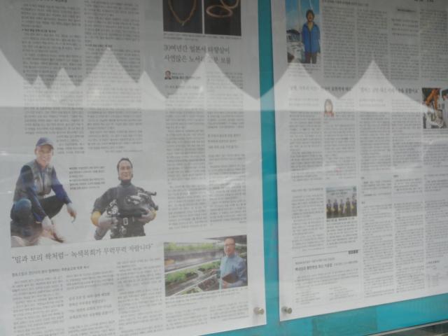 2015年5月18日 東亜日報壁新聞