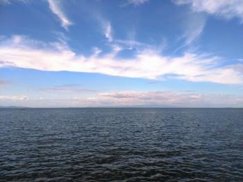 長松浜 海