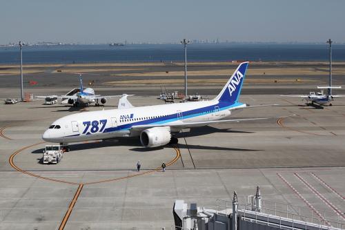 JA810A_羽田
