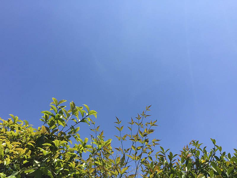 blue_sky_23.jpg
