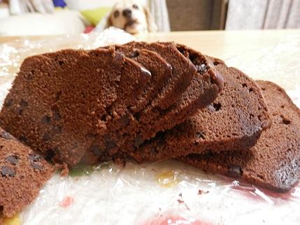 ケーキ越しのここあ
