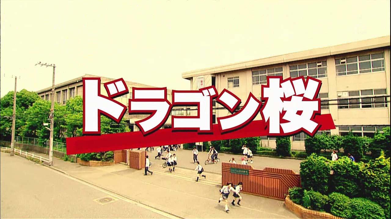 dragonzakura01.jpg